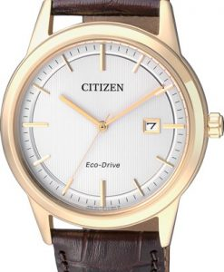 Citizen Eco Drive Uomo Dorato